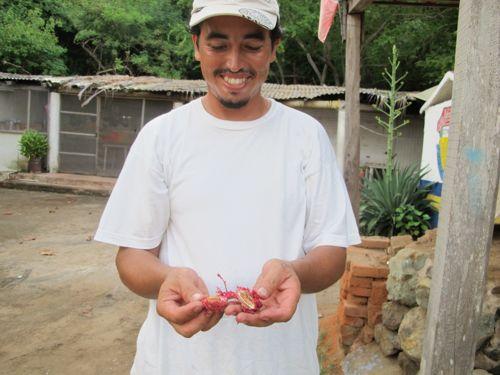 Alejandro with sea almond
